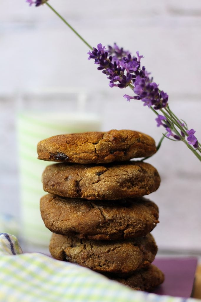 Gluten-free cookies from teff flour with cranberries